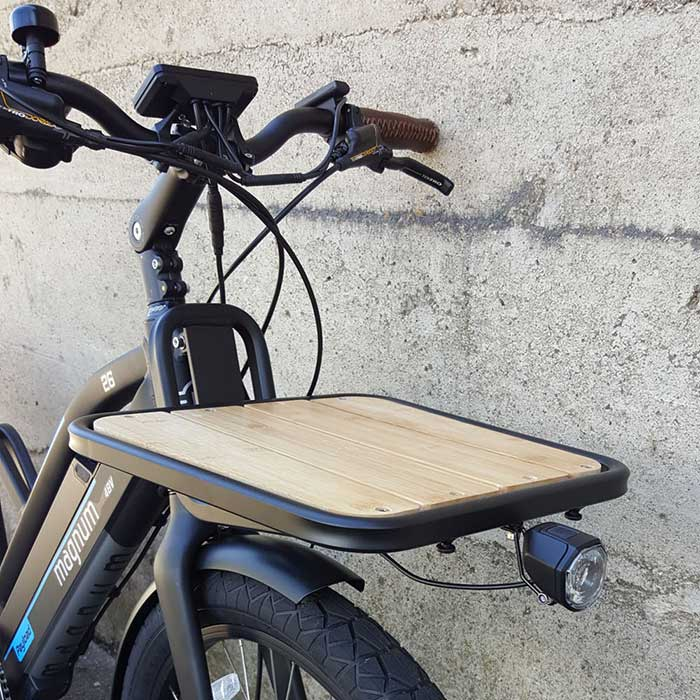 Magnum Payload electric bike