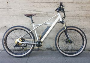 Surface 604 Quad Electric Mountain Bike