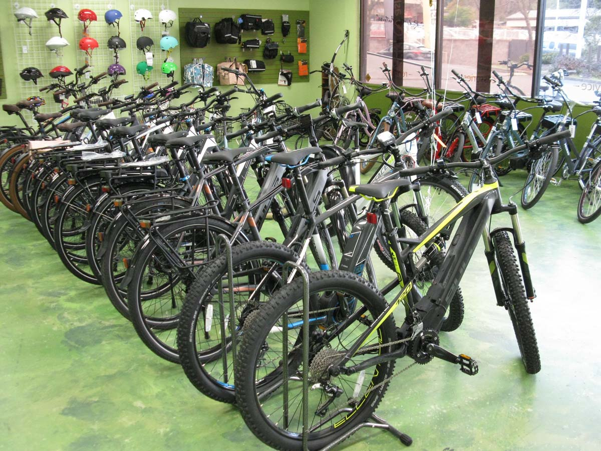 Ashland Electric Bikes Showroom